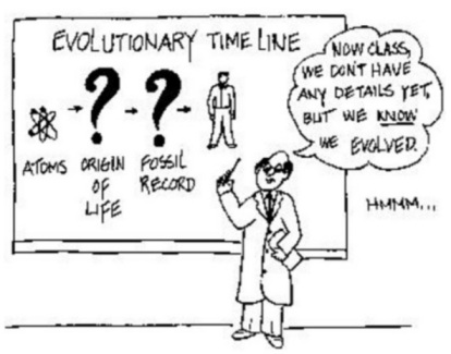 EVOLUTION THEORY