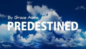 predestined-sola-gratia
